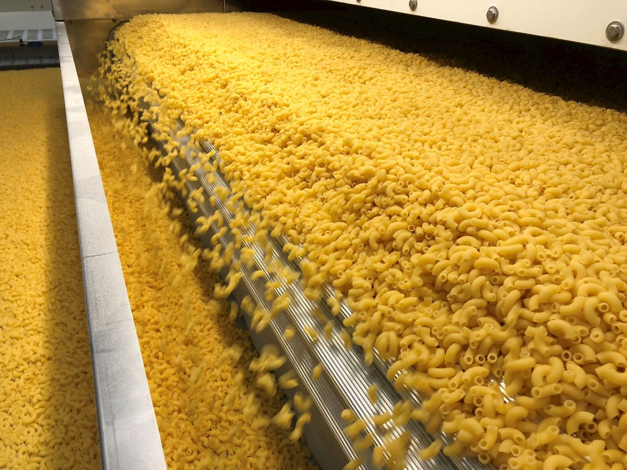 Prodcution line at Gyermelyi. In 2019 the company plans on producing some 36,000 tons of pasta.