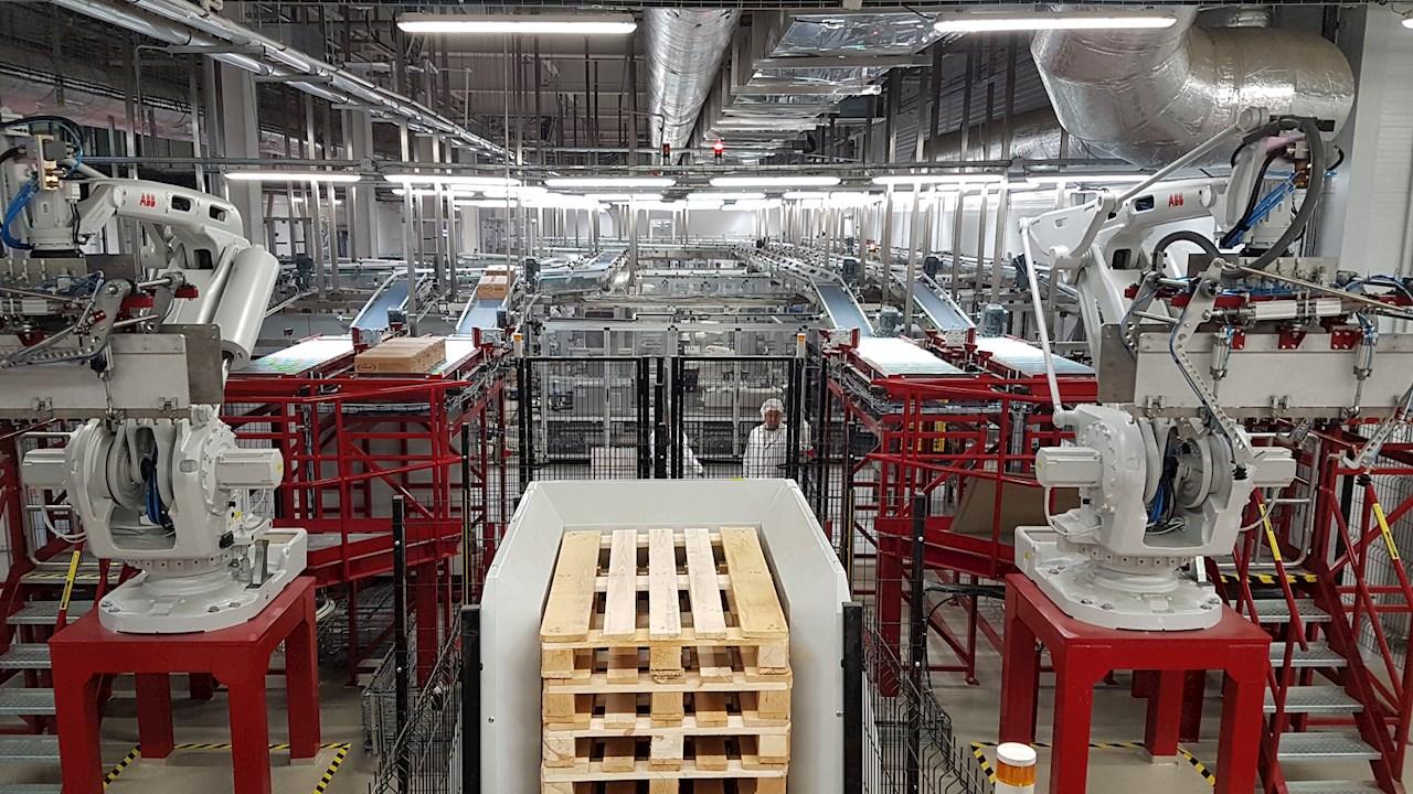 Технологический процесс конвейеров поселок элеватор 4 рязань