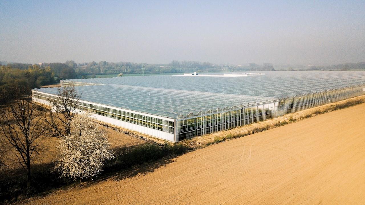 Bezdínek, Tjeckiens modernaste växthus