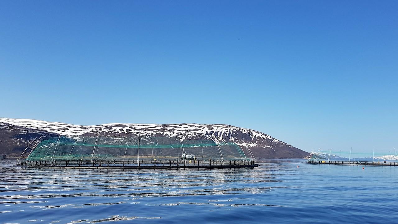 ABB elektrifiserer arbeidsbåt for Norcod utenfor Frøya